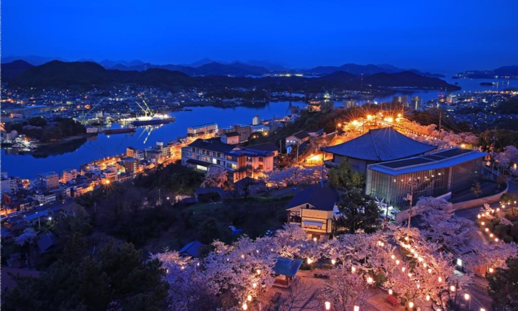 千光寺公園夜桜